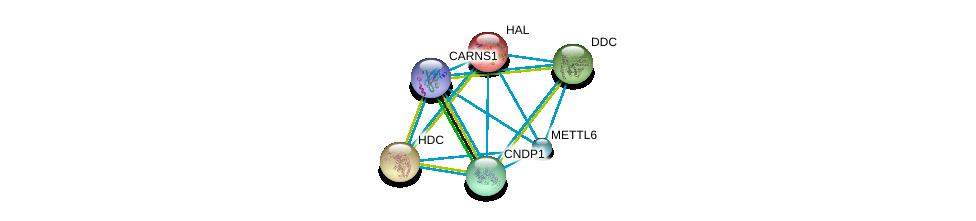 http://string-db.org/version_10/api/image/networkList?limit=0&targetmode=proteins&caller_identity=gene_cards&network_flavor=evidence&identifiers=9606.ENSP00000373300%0d%0a9606.ENSP00000261208%0d%0a9606.ENSP00000267845%0d%0a9606.ENSP00000389009%0d%0a9606.ENSP00000351682%0d%0a9606.ENSP00000350616%0d%0a