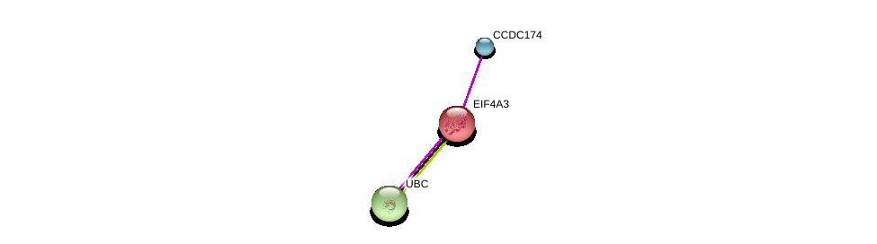 http://string-db.org/version_10/api/image/networkList?limit=0&targetmode=proteins&caller_identity=gene_cards&network_flavor=evidence&identifiers=9606.ENSP00000373304%0d%0a9606.ENSP00000269349%0d%0a9606.ENSP00000344818%0d%0a