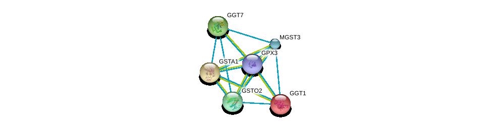 http://string-db.org/version_10/api/image/networkList?limit=0&targetmode=proteins&caller_identity=gene_cards&network_flavor=evidence&identifiers=9606.ENSP00000373477%0d%0a9606.ENSP00000248923%0d%0a9606.ENSP00000335620%0d%0a9606.ENSP00000338964%0d%0a9606.ENSP00000345023%0d%0a9606.ENSP00000356859%0d%0a