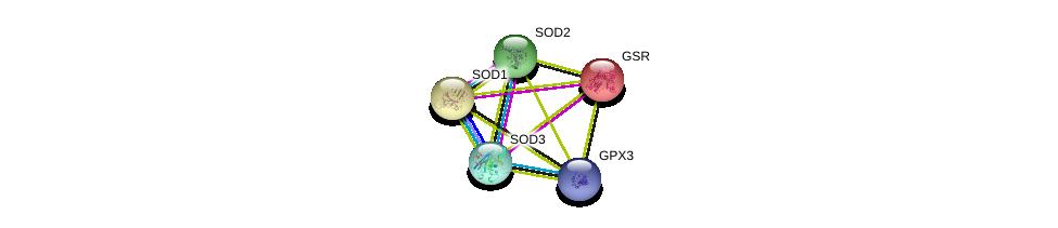 http://string-db.org/version_10/api/image/networkList?limit=0&targetmode=proteins&caller_identity=gene_cards&network_flavor=evidence&identifiers=9606.ENSP00000373477%0d%0a9606.ENSP00000356022%0d%0a9606.ENSP00000356022%0d%0a9606.ENSP00000371554%0d%0a9606.ENSP00000221130%0d%0a9606.ENSP00000270142%0d%0a