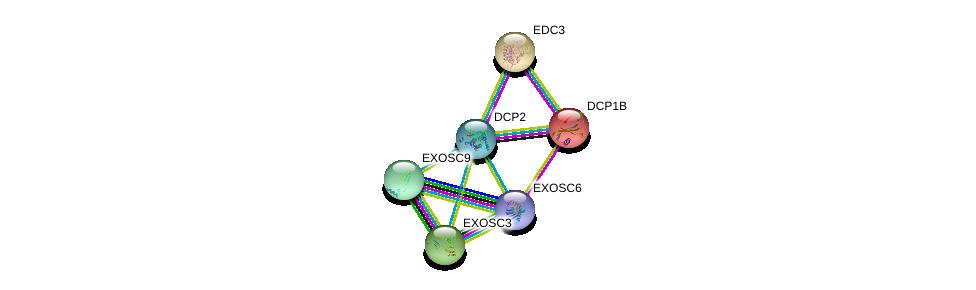 http://string-db.org/version_10/api/image/networkList?limit=0&targetmode=proteins&caller_identity=gene_cards&network_flavor=evidence&identifiers=9606.ENSP00000373715%0d%0a9606.ENSP00000280665%0d%0a9606.ENSP00000320503%0d%0a9606.ENSP00000368984%0d%0a9606.ENSP00000323046%0d%0a9606.ENSP00000398597%0d%0a