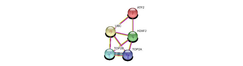 http://string-db.org/version_10/api/image/networkList?limit=0&targetmode=proteins&caller_identity=gene_cards&network_flavor=evidence&identifiers=9606.ENSP00000373730%0d%0a9606.ENSP00000344818%0d%0a9606.ENSP00000396704%0d%0a9606.ENSP00000411532%0d%0a9606.ENSP00000396704%0d%0a9606.ENSP00000264110%0d%0a