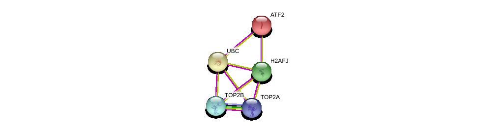 http://string-db.org/version_10/api/image/networkList?limit=0&targetmode=proteins&caller_identity=gene_cards&network_flavor=evidence&identifiers=9606.ENSP00000373730%0d%0a9606.ENSP00000344818%0d%0a9606.ENSP00000411532%0d%0a9606.ENSP00000396704%0d%0a9606.ENSP00000396704%0d%0a9606.ENSP00000264110%0d%0a