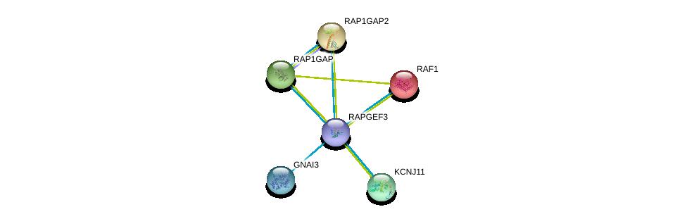 http://string-db.org/version_10/api/image/networkList?limit=0&targetmode=proteins&caller_identity=gene_cards&network_flavor=evidence&identifiers=9606.ENSP00000373864%0d%0a9606.ENSP00000251849%0d%0a9606.ENSP00000254695%0d%0a9606.ENSP00000290101%0d%0a9606.ENSP00000345708%0d%0a9606.ENSP00000358867%0d%0a