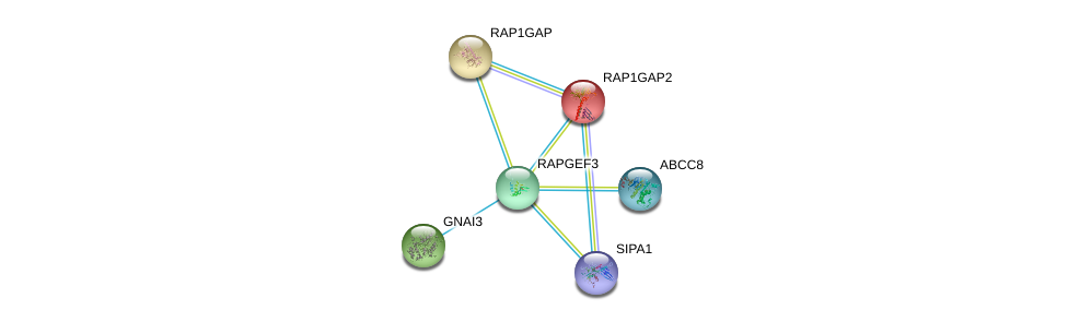 http://string-db.org/version_10/api/image/networkList?limit=0&targetmode=proteins&caller_identity=gene_cards&network_flavor=evidence&identifiers=9606.ENSP00000373864%0d%0a9606.ENSP00000374467%0d%0a9606.ENSP00000358867%0d%0a9606.ENSP00000377771%0d%0a9606.ENSP00000254695%0d%0a9606.ENSP00000290101%0d%0a