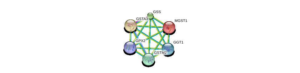 http://string-db.org/version_10/api/image/networkList?limit=0&targetmode=proteins&caller_identity=gene_cards&network_flavor=evidence&identifiers=9606.ENSP00000374265%0d%0a9606.ENSP00000010404%0d%0a9606.ENSP00000211122%0d%0a9606.ENSP00000216951%0d%0a9606.ENSP00000241337%0d%0a9606.ENSP00000248923%0d%0a