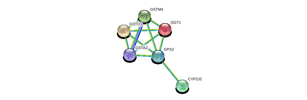 http://string-db.org/version_10/api/image/networkList?limit=0&targetmode=proteins&caller_identity=gene_cards&network_flavor=evidence&identifiers=9606.ENSP00000374265%0d%0a9606.ENSP00000420168%0d%0a9606.ENSP00000248923%0d%0a9606.ENSP00000358727%0d%0a9606.ENSP00000358851%0d%0a9606.ENSP00000360247%0d%0a