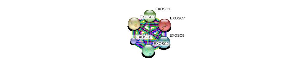 http://string-db.org/version_10/api/image/networkList?limit=0&targetmode=proteins&caller_identity=gene_cards&network_flavor=evidence&identifiers=9606.ENSP00000374354%0d%0a9606.ENSP00000368984%0d%0a9606.ENSP00000323046%0d%0a9606.ENSP00000265564%0d%0a9606.ENSP00000359939%0d%0a9606.ENSP00000361433%0d%0a