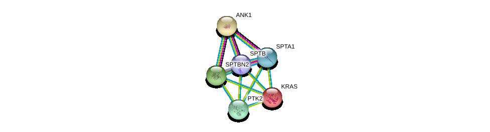 http://string-db.org/version_10/api/image/networkList?limit=0&targetmode=proteins&caller_identity=gene_cards&network_flavor=evidence&identifiers=9606.ENSP00000374372%0d%0a9606.ENSP00000357130%0d%0a9606.ENSP00000265709%0d%0a9606.ENSP00000256078%0d%0a9606.ENSP00000311489%0d%0a9606.ENSP00000341189%0d%0a