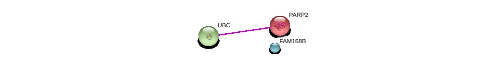 http://string-db.org/version_10/api/image/networkList?limit=0&targetmode=proteins&caller_identity=gene_cards&network_flavor=evidence&identifiers=9606.ENSP00000374565%0d%0a9606.ENSP00000250416%0d%0a9606.ENSP00000344818%0d%0a