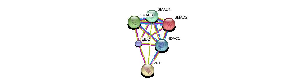 http://string-db.org/version_10/api/image/networkList?limit=0&targetmode=proteins&caller_identity=gene_cards&network_flavor=evidence&identifiers=9606.ENSP00000375073%0d%0a9606.ENSP00000267163%0d%0a9606.ENSP00000332973%0d%0a9606.ENSP00000262160%0d%0a9606.ENSP00000341551%0d%0a9606.ENSP00000362649%0d%0a