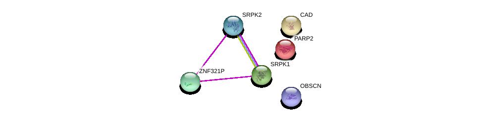 http://string-db.org/version_10/api/image/networkList?limit=0&targetmode=proteins&caller_identity=gene_cards&network_flavor=evidence&identifiers=9606.ENSP00000375656%0d%0a9606.ENSP00000377262%0d%0a9606.ENSP00000362931%0d%0a9606.ENSP00000250416%0d%0a9606.ENSP00000264705%0d%0a9606.ENSP00000455507%0d%0a