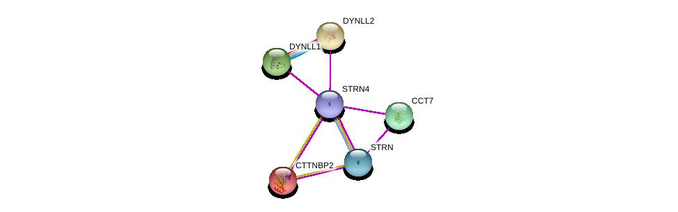 http://string-db.org/version_10/api/image/networkList?limit=0&targetmode=proteins&caller_identity=gene_cards&network_flavor=evidence&identifiers=9606.ENSP00000375777%0d%0a9606.ENSP00000160373%0d%0a9606.ENSP00000240343%0d%0a9606.ENSP00000242577%0d%0a9606.ENSP00000258091%0d%0a9606.ENSP00000263918%0d%0a