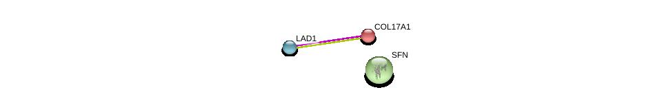 http://string-db.org/version_10/api/image/networkList?limit=0&targetmode=proteins&caller_identity=gene_cards&network_flavor=evidence&identifiers=9606.ENSP00000375829%0d%0a9606.ENSP00000340937%0d%0a9606.ENSP00000340989%0d%0a