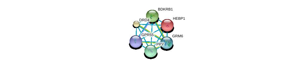 http://string-db.org/version_10/api/image/networkList?limit=0&targetmode=proteins&caller_identity=gene_cards&network_flavor=evidence&identifiers=9606.ENSP00000375893%0d%0a9606.ENSP00000014930%0d%0a9606.ENSP00000176183%0d%0a9606.ENSP00000216629%0d%0a9606.ENSP00000225992%0d%0a9606.ENSP00000231188%0d%0a