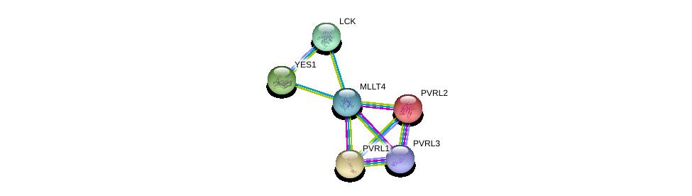 http://string-db.org/version_10/api/image/networkList?limit=0&targetmode=proteins&caller_identity=gene_cards&network_flavor=evidence&identifiers=9606.ENSP00000375956%0d%0a9606.ENSP00000252483%0d%0a9606.ENSP00000264025%0d%0a9606.ENSP00000418070%0d%0a9606.ENSP00000324740%0d%0a9606.ENSP00000337825%0d%0a