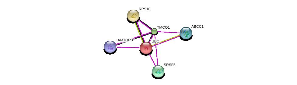 http://string-db.org/version_10/api/image/networkList?limit=0&targetmode=proteins&caller_identity=gene_cards&network_flavor=evidence&identifiers=9606.ENSP00000375975%0d%0a9606.ENSP00000344818%0d%0a9606.ENSP00000424183%0d%0a9606.ENSP00000382342%0d%0a9606.ENSP00000377892%0d%0a9606.ENSP00000347271%0d%0a