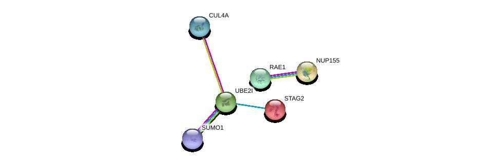 http://string-db.org/version_10/api/image/networkList?limit=0&targetmode=proteins&caller_identity=gene_cards&network_flavor=evidence&identifiers=9606.ENSP00000376076%0d%0a9606.ENSP00000324897%0d%0a9606.ENSP00000218089%0d%0a9606.ENSP00000364589%0d%0a9606.ENSP00000231498%0d%0a9606.ENSP00000360286%0d%0a