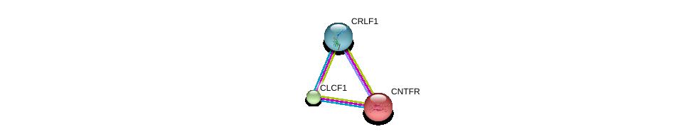 http://string-db.org/version_10/api/image/networkList?limit=0&targetmode=proteins&caller_identity=gene_cards&network_flavor=evidence&identifiers=9606.ENSP00000376188%0d%0a9606.ENSP00000242338%0d%0a9606.ENSP00000309338%0d%0a