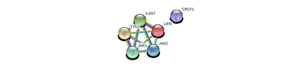 http://string-db.org/version_10/api/image/networkList?limit=0&targetmode=proteins&caller_identity=gene_cards&network_flavor=evidence&identifiers=9606.ENSP00000376188%0d%0a9606.ENSP00000371067%0d%0a9606.ENSP00000343204%0d%0a9606.ENSP00000264818%0d%0a9606.ENSP00000338799%0d%0a9606.ENSP00000263409%0d%0a