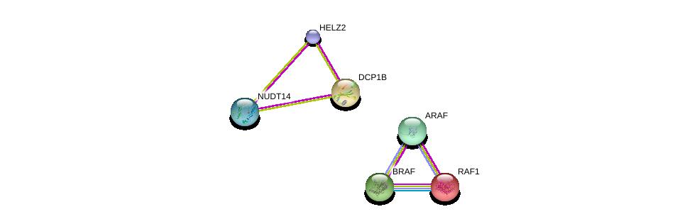 http://string-db.org/version_10/api/image/networkList?limit=0&targetmode=proteins&caller_identity=gene_cards&network_flavor=evidence&identifiers=9606.ENSP00000376349%0d%0a9606.ENSP00000417401%0d%0a9606.ENSP00000251849%0d%0a9606.ENSP00000288602%0d%0a9606.ENSP00000366244%0d%0a9606.ENSP00000280665%0d%0a