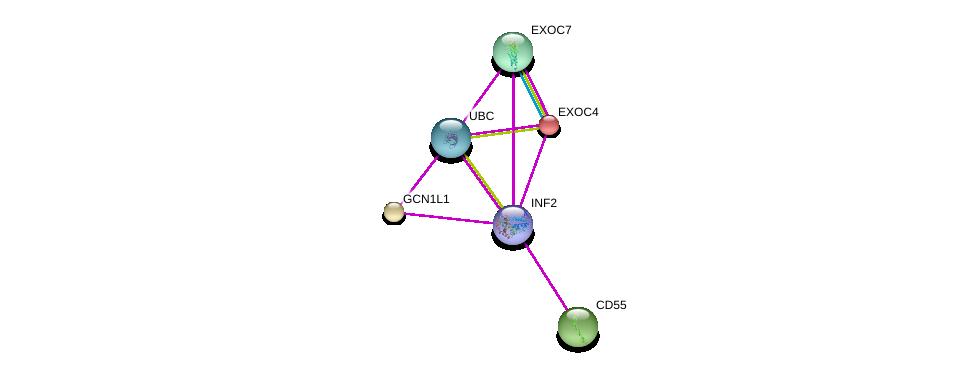 http://string-db.org/version_10/api/image/networkList?limit=0&targetmode=proteins&caller_identity=gene_cards&network_flavor=evidence&identifiers=9606.ENSP00000376410%0d%0a9606.ENSP00000344818%0d%0a9606.ENSP00000253861%0d%0a9606.ENSP00000300648%0d%0a9606.ENSP00000316333%0d%0a9606.ENSP00000334100%0d%0a