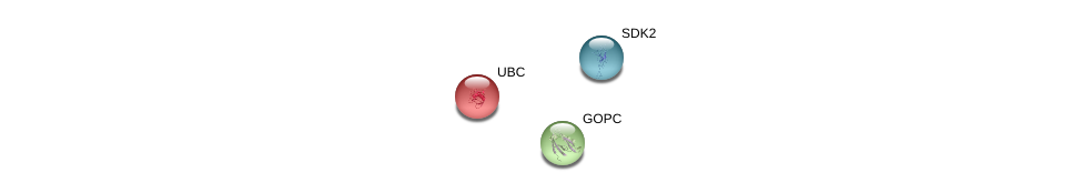http://string-db.org/version_10/api/image/networkList?limit=0&targetmode=proteins&caller_identity=gene_cards&network_flavor=evidence&identifiers=9606.ENSP00000376421%0d%0a9606.ENSP00000344818%0d%0a9606.ENSP00000357484%0d%0a