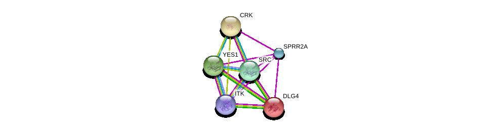 http://string-db.org/version_10/api/image/networkList?limit=0&targetmode=proteins&caller_identity=gene_cards&network_flavor=evidence&identifiers=9606.ENSP00000376423%0d%0a9606.ENSP00000300574%0d%0a9606.ENSP00000350941%0d%0a9606.ENSP00000398655%0d%0a9606.ENSP00000293813%0d%0a9606.ENSP00000324740%0d%0a