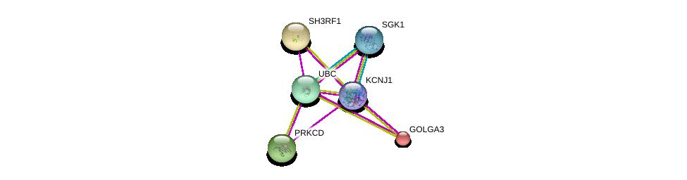 http://string-db.org/version_10/api/image/networkList?limit=0&targetmode=proteins&caller_identity=gene_cards&network_flavor=evidence&identifiers=9606.ENSP00000376432%0d%0a9606.ENSP00000356832%0d%0a9606.ENSP00000344818%0d%0a9606.ENSP00000331602%0d%0a9606.ENSP00000284637%0d%0a9606.ENSP00000204726%0d%0a