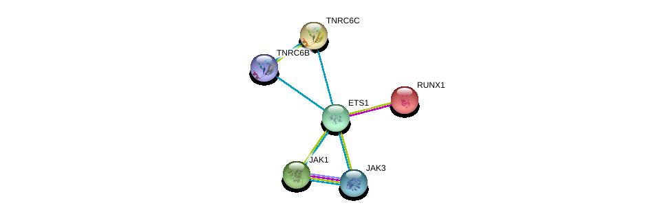 http://string-db.org/version_10/api/image/networkList?limit=0&targetmode=proteins&caller_identity=gene_cards&network_flavor=evidence&identifiers=9606.ENSP00000376436%0d%0a9606.ENSP00000300305%0d%0a9606.ENSP00000336783%0d%0a9606.ENSP00000401946%0d%0a9606.ENSP00000343204%0d%0a9606.ENSP00000391676%0d%0a