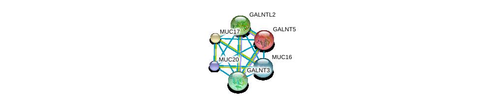 http://string-db.org/version_10/api/image/networkList?limit=0&targetmode=proteins&caller_identity=gene_cards&network_flavor=evidence&identifiers=9606.ENSP00000376465%0d%0a9606.ENSP00000302716%0d%0a9606.ENSP00000396774%0d%0a9606.ENSP00000381008%0d%0a9606.ENSP00000259056%0d%0a9606.ENSP00000344260%0d%0a
