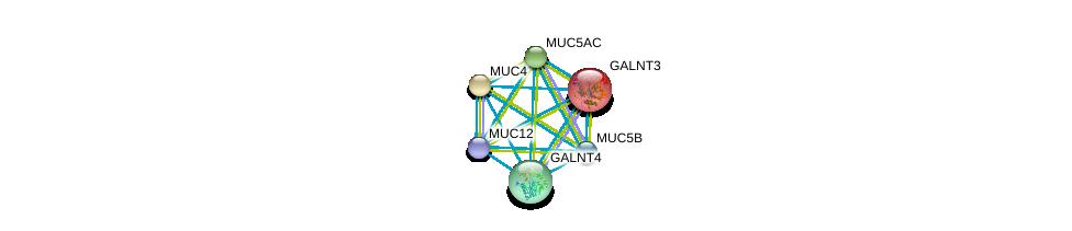 http://string-db.org/version_10/api/image/networkList?limit=0&targetmode=proteins&caller_identity=gene_cards&network_flavor=evidence&identifiers=9606.ENSP00000376465%0d%0a9606.ENSP00000441929%0d%0a9606.ENSP00000436812%0d%0a9606.ENSP00000436604%0d%0a9606.ENSP00000435591%0d%0a9606.ENSP00000417498%0d%0a