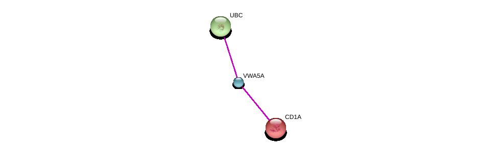 http://string-db.org/version_10/api/image/networkList?limit=0&targetmode=proteins&caller_identity=gene_cards&network_flavor=evidence&identifiers=9606.ENSP00000376504%0d%0a9606.ENSP00000289429%0d%0a9606.ENSP00000344818%0d%0a