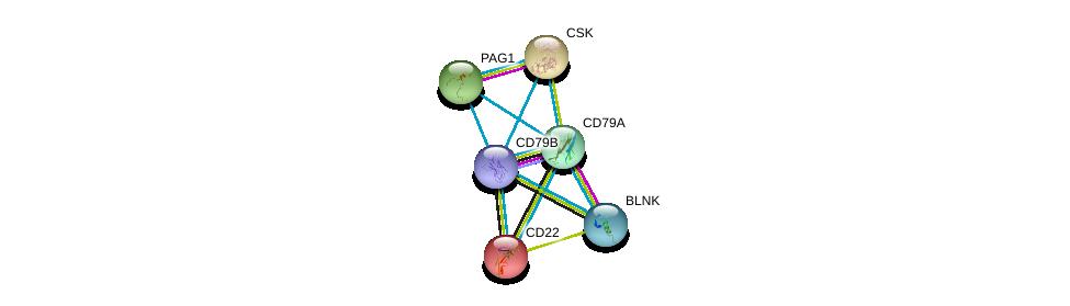 http://string-db.org/version_10/api/image/networkList?limit=0&targetmode=proteins&caller_identity=gene_cards&network_flavor=evidence&identifiers=9606.ENSP00000376544%0d%0a9606.ENSP00000221972%0d%0a9606.ENSP00000085219%0d%0a9606.ENSP00000220003%0d%0a9606.ENSP00000220597%0d%0a9606.ENSP00000224337%0d%0a