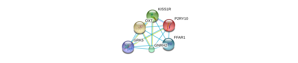 http://string-db.org/version_10/api/image/networkList?limit=0&targetmode=proteins&caller_identity=gene_cards&network_flavor=evidence&identifiers=9606.ENSP00000376609%0d%0a9606.ENSP00000171757%0d%0a9606.ENSP00000217386%0d%0a9606.ENSP00000234371%0d%0a9606.ENSP00000245983%0d%0a9606.ENSP00000246553%0d%0a