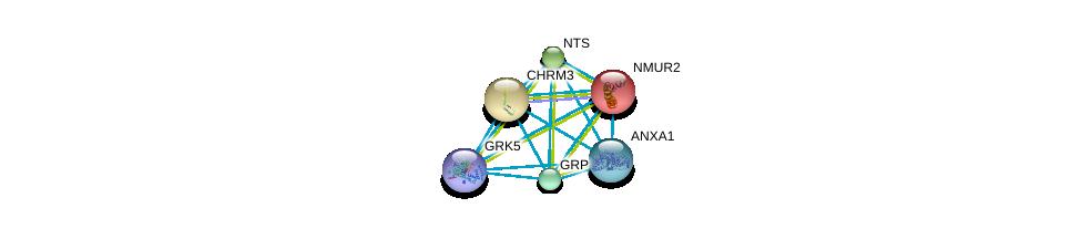 http://string-db.org/version_10/api/image/networkList?limit=0&targetmode=proteins&caller_identity=gene_cards&network_flavor=evidence&identifiers=9606.ENSP00000376609%0d%0a9606.ENSP00000255262%0d%0a9606.ENSP00000255380%0d%0a9606.ENSP00000256010%0d%0a9606.ENSP00000256857%0d%0a9606.ENSP00000257497%0d%0a