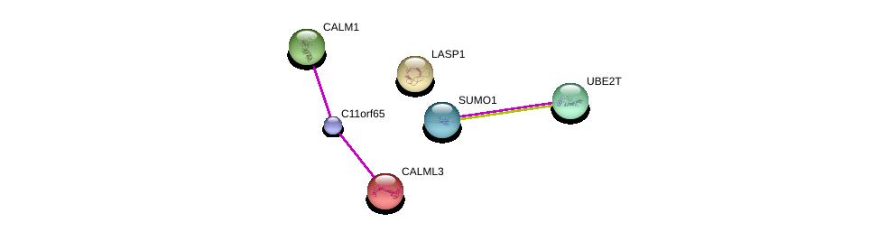 http://string-db.org/version_10/api/image/networkList?limit=0&targetmode=proteins&caller_identity=gene_cards&network_flavor=evidence&identifiers=9606.ENSP00000376799%0d%0a9606.ENSP00000376076%0d%0a9606.ENSP00000356243%0d%0a9606.ENSP00000315299%0d%0a9606.ENSP00000349467%0d%0a9606.ENSP00000325240%0d%0a