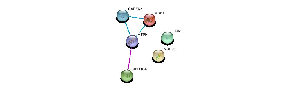 http://string-db.org/version_10/api/image/networkList?limit=0&targetmode=proteins&caller_identity=gene_cards&network_flavor=evidence&identifiers=9606.ENSP00000376800%0d%0a9606.ENSP00000310668%0d%0a9606.ENSP00000331487%0d%0a9606.ENSP00000338413%0d%0a9606.ENSP00000264758%0d%0a9606.ENSP00000354947%0d%0a