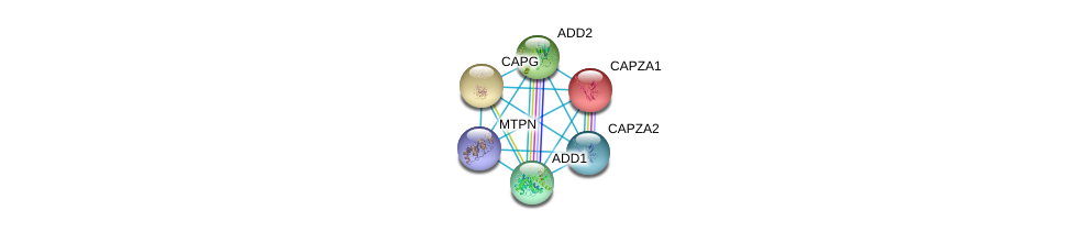 http://string-db.org/version_10/api/image/networkList?limit=0&targetmode=proteins&caller_identity=gene_cards&network_flavor=evidence&identifiers=9606.ENSP00000376800%0d%0a9606.ENSP00000354947%0d%0a9606.ENSP00000263867%0d%0a9606.ENSP00000263168%0d%0a9606.ENSP00000264436%0d%0a9606.ENSP00000264758%0d%0a