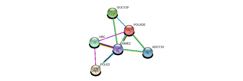 http://string-db.org/version_10/api/image/networkList?limit=0&targetmode=proteins&caller_identity=gene_cards&network_flavor=evidence&identifiers=9606.ENSP00000376889%0d%0a9606.ENSP00000344818%0d%0a9606.ENSP00000356825%0d%0a9606.ENSP00000215587%0d%0a9606.ENSP00000216367%0d%0a9606.ENSP00000218006%0d%0a