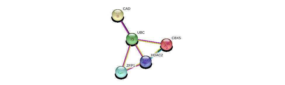 http://string-db.org/version_10/api/image/networkList?limit=0&targetmode=proteins&caller_identity=gene_cards&network_flavor=evidence&identifiers=9606.ENSP00000377080%0d%0a9606.ENSP00000344818%0d%0a9606.ENSP00000430432%0d%0a9606.ENSP00000209875%0d%0a9606.ENSP00000209875%0d%0a9606.ENSP00000264705%0d%0a