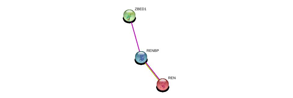 http://string-db.org/version_10/api/image/networkList?limit=0&targetmode=proteins&caller_identity=gene_cards&network_flavor=evidence&identifiers=9606.ENSP00000377303%0d%0a9606.ENSP00000272190%0d%0a9606.ENSP00000370616%0d%0a