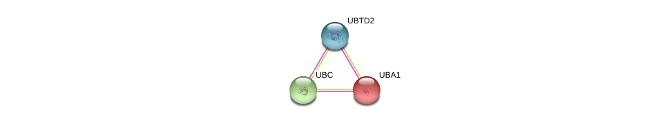 http://string-db.org/version_10/api/image/networkList?limit=0&targetmode=proteins&caller_identity=gene_cards&network_flavor=evidence&identifiers=9606.ENSP00000377381%0d%0a9606.ENSP00000344818%0d%0a9606.ENSP00000338413%0d%0a