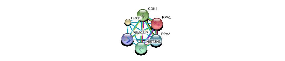 http://string-db.org/version_10/api/image/networkList?limit=0&targetmode=proteins&caller_identity=gene_cards&network_flavor=evidence&identifiers=9606.ENSP00000377384%0d%0a9606.ENSP00000363021%0d%0a9606.ENSP00000254719%0d%0a9606.ENSP00000256246%0d%0a9606.ENSP00000355657%0d%0a9606.ENSP00000257904%0d%0a