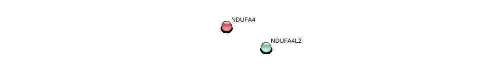 http://string-db.org/version_10/api/image/networkList?limit=0&targetmode=proteins&caller_identity=gene_cards&network_flavor=evidence&identifiers=9606.ENSP00000377411%0d%0a9606.ENSP00000339720%0d%0a