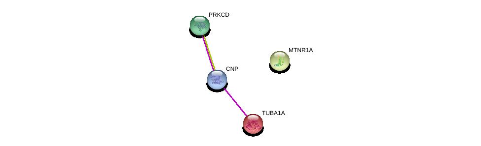 http://string-db.org/version_10/api/image/networkList?limit=0&targetmode=proteins&caller_identity=gene_cards&network_flavor=evidence&identifiers=9606.ENSP00000377470%0d%0a9606.ENSP00000301071%0d%0a9606.ENSP00000331602%0d%0a9606.ENSP00000302811%0d%0a