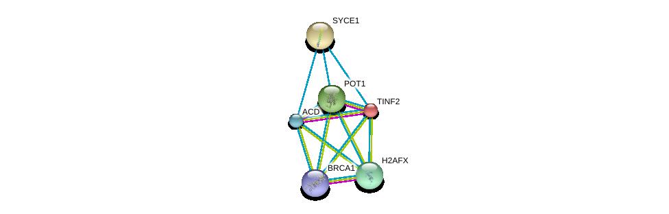 http://string-db.org/version_10/api/image/networkList?limit=0&targetmode=proteins&caller_identity=gene_cards&network_flavor=evidence&identifiers=9606.ENSP00000377496%0d%0a9606.ENSP00000350249%0d%0a9606.ENSP00000267415%0d%0a9606.ENSP00000341282%0d%0a9606.ENSP00000364310%0d%0a9606.ENSP00000418960%0d%0a