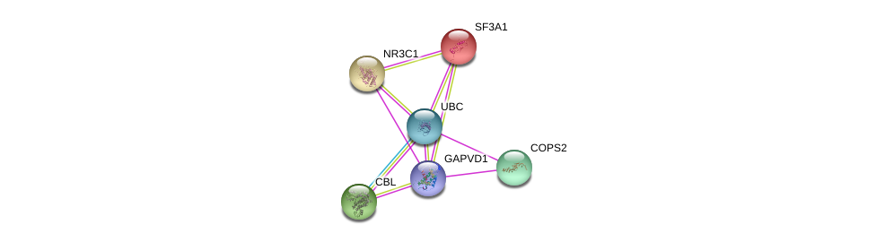 http://string-db.org/version_10/api/image/networkList?limit=0&targetmode=proteins&caller_identity=gene_cards&network_flavor=evidence&identifiers=9606.ENSP00000377665%0d%0a9606.ENSP00000344818%0d%0a9606.ENSP00000299259%0d%0a9606.ENSP00000264033%0d%0a9606.ENSP00000215793%0d%0a9606.ENSP00000231509%0d%0a