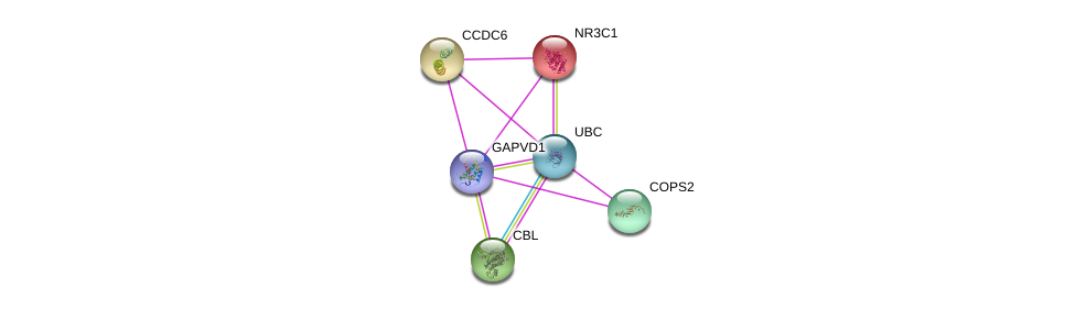 http://string-db.org/version_10/api/image/networkList?limit=0&targetmode=proteins&caller_identity=gene_cards&network_flavor=evidence&identifiers=9606.ENSP00000377665%0d%0a9606.ENSP00000344818%0d%0a9606.ENSP00000299259%0d%0a9606.ENSP00000264033%0d%0a9606.ENSP00000263102%0d%0a9606.ENSP00000231509%0d%0a