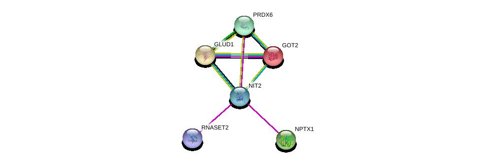 http://string-db.org/version_10/api/image/networkList?limit=0&targetmode=proteins&caller_identity=gene_cards&network_flavor=evidence&identifiers=9606.ENSP00000377696%0d%0a9606.ENSP00000307549%0d%0a9606.ENSP00000342026%0d%0a9606.ENSP00000422846%0d%0a9606.ENSP00000245206%0d%0a9606.ENSP00000277865%0d%0a